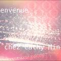 Bienvenue sur le blog de Cathy Mini !