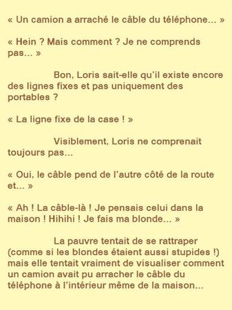 59__et_on_accuse_les_blondes_de_stupides