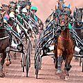 Adopter un cheval réformé des courses