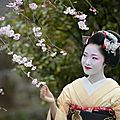  MAIKO SPRING MATSURI 