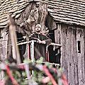 en 835, les pirates du nord vinrent par deux fois sur l'île d' Her. (Abbatia Sancti Philiberti. Noirmoutier-en-l'Île, Vendée)