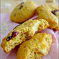 Cookies au son d'avoine, <b>cranberries</b>, chocolat blanc et zestes d'orange