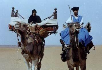 معبرة الصحراء المغربية 7334514_m.jpg