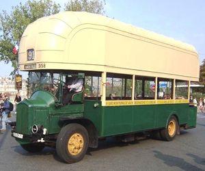 bus__17_