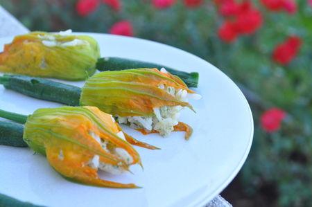 Fleurs de courgettes farcies au riz mozzarella et saumon blog cuisine avec du chocolat ou - Fleurs de courgettes farcies ...