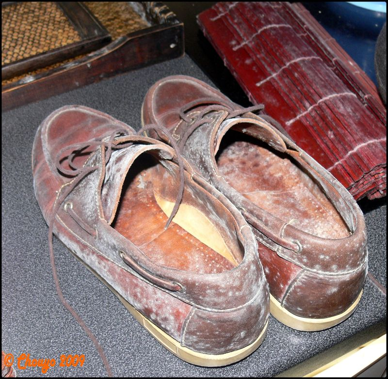 Chaussures moisies placard - Placard a chaussure ...
