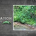 photo nature scrap <b>citation</b>