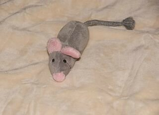 320px-Plush_-_rat_or_mouse[1]