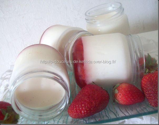 yaourt01