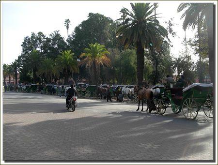marrakech__388_