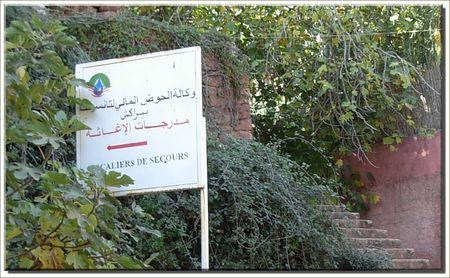 Copie_de_marrakech__342_