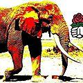 <b>Fabius</b> et le cimetière des éléphants