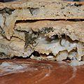 Pique-nique sous les frondaisons: focaccia au fromage et à la sauge
