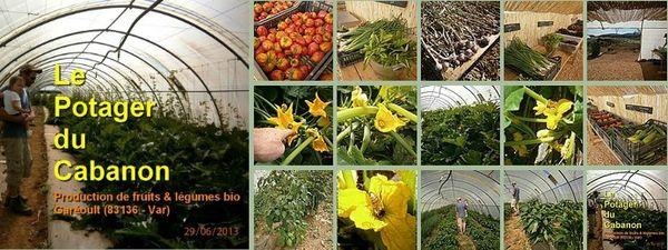 visite guidée légumes bio garéoult var