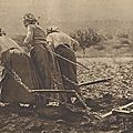 1917 : Trois robustes paysannes