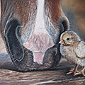 isabelle Comus, peintre animalier