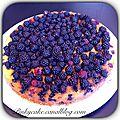 Gâteau moelleux aux mûres sauvages sans gluten, sans lactose