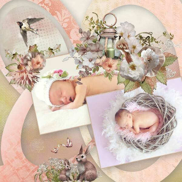 Géraldine Gons - kit Sweet Peach de Stephy Scrap, rak pixabay