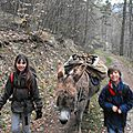 Week-end rando famille avec un âne