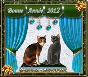 012-carte-bonne-annee-2012-voeux-chats