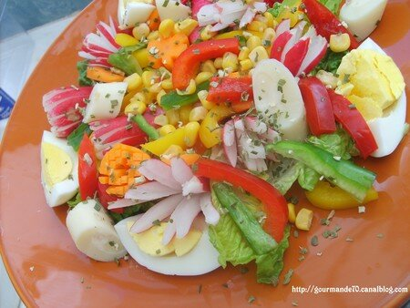 Ma salade fraicheur recette for Entree froide ete
