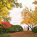 New York en automne, quoi faire ?