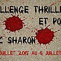 <b>Challenge</b> <b>Thrillers</b> et <b>Polars</b> 2016