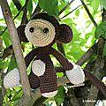 SC n°337 : petit singe dans les embouteillages...