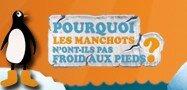 logo_manchots_france_2