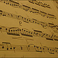 La musique une grande passion !