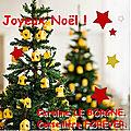 JOYEUX N