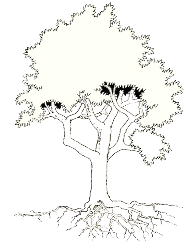 Arbre genealogique de tattoo pictures to pin on pinterest - Fabriquer un arbre genealogique original ...