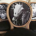 Les chaises médaillon relookées avec mes photos noir et blanc