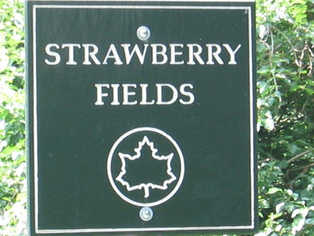 Strawberry_Fields