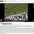 Compagnon Ours - Un film <b>témoignage</b> à voir absolument