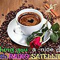 RADIO SATE