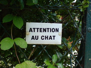 AttentionAuChat