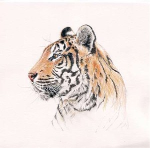 tiger_painting