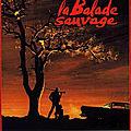 La Balade Sauvage (L'équipée meurtrière)