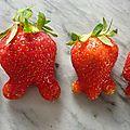 La marche des fraises ?
