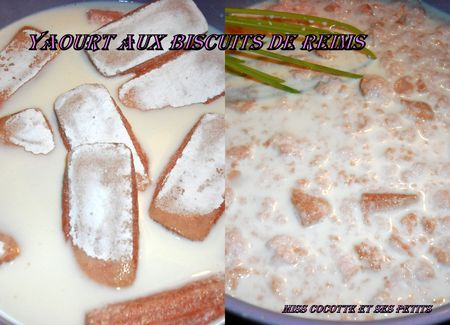 yaourts_aux_biscuits_de_reims