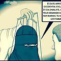 Nassim Seddiki diffuse un dessin complotiste islamophobe