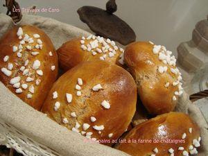 pains au lait à la farine de châtaignes2