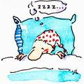 <b>S</b>'<b>organiser</b> pour mieux dormir