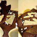 °<b>chocolat</b>, piment & passion°