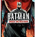 Batman: Under the Red Hood, a question, no answer?