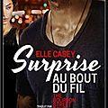 The Bourbon Street Boys, Tome 1 : Surprise au bout du fil, d'Elle Casey
