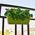 The <b>serial</b> <b>crocheteuses</b> n°217 : au balcon