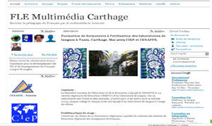 Fle multimédia Carthage