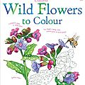 WILD FLOWERS TO COLOUR